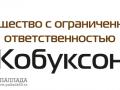 Кобуксон