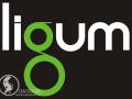 Lligum